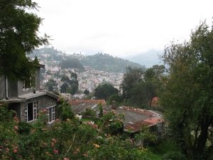 A View of Kodai town from Coaker's walk