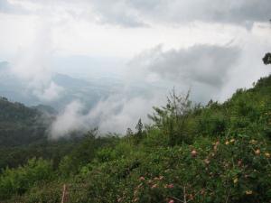 Valley view -Coaker's walk